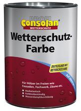 Consolan Profi Wetterschutz Farbe silbergrau Seidenglänzend 10 Liter