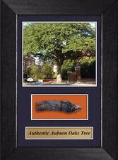 Auburn University Toomers Corner Auburn Oaks  w/ Actual Wood Sold Out Edition