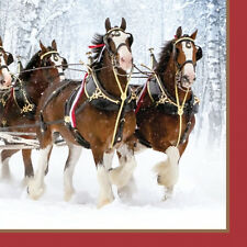 BUDWEISER CLYDESDALES LUNCH NAPKINS (16) ~ Adult Birthday Party Supplies Dinner