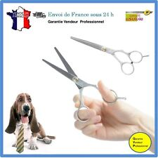 Ciseaux plats pour Animaux Ciseaux coupe pelage chien chat