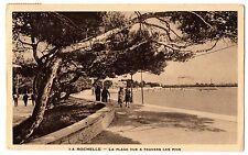CPA 17 - LA ROCHELLE (Charente Maritime) - La Plage vue à travers les Pins