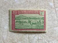 RARE Cameroon 1925  2C Stamp   MINT