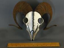Dan Day Signed Rams Head Metal Sculpture Free Standing or wall Hanging Americana