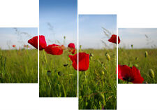 """Summer Poppies Flower Print Set 20"""" X 40""""+ Long 4 Panel Canvas Picture Wall Art"""