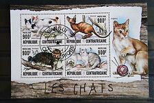 Katzen 53 cats Chats Centrafricaine Tiere animals pets Fauna KB sheet gestempelt
