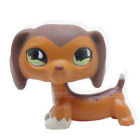 #675 Rera Littlest Pet Shop LPS POPULAR Brown Dachshund Savvy Reed AUTHENTIC