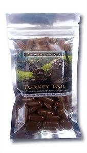 Turkey Tail Mushroom Extract (50% Polysaccharides ), Vegetarian Capsules