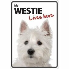 Westie Lives Here A5 Plastic Sign