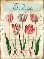 Lovely Tulips in Pastel Quilt Block Multi Sizes FrEE ShiPPinG WoRld WiDE
