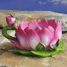 Miniature Fairy Garden Lotus Tea Cup Planter