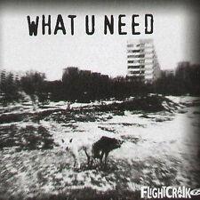 FLIGHTCRANK - What U Need (Adamski, Maxim Rmxs) - Copasetik