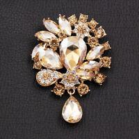 Women's Crystal Rhinestone Flower Charm Betsey Johnson Brooch Pin Party Gift