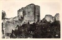 MONTOIRE-sur-le-LOIR - Ruines du Château - Monument historique