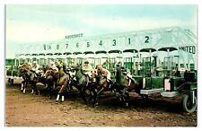 1950s/60s The Aquaduct, The Big A, Long Island, NY Horse Race Track Postcard