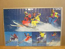 vintage 1990 Skiing original verkerke ski poster  8115