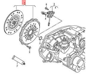 Genuine AUDI SEAT VW A1 Ibiza ST Clutch Plate And Pressure Plate 04E141015C