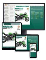 Kawasaki Ninja ZX-10R (2004-2010) Haynes Online Manuals