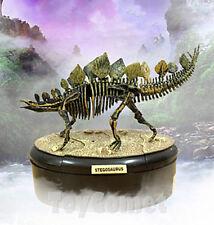 Stegosaurus Dino Dinosaur Skeleton Fossil 4D 3D Puzzle Model Toy