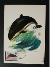 marine mammal whale killer maximum card Netherlands 72278