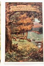 24621 Künstler AK Volkslied Nr.5 Wer hat dich, du schöner Wald - Rehe