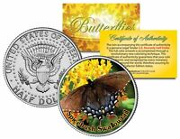 SPICEBUSH SWALLOWTAIL BUTTERFLY JFK Kennedy Half Dollar US Colorized Coin