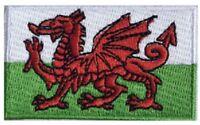 Welsh Flag Small Iron On / Sew On Patch Badge 6 x 3.5cm WALES St David Cymru