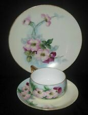 ROSENTHAL BAVARIA HAND PAINTED THREE PIECE CUP SAUCER PLATE SET PINK MAUVE ROSES