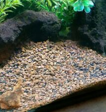 16 lbs Ideal substrate for freshwater aquatic plants filtration 3/8 stratum lava