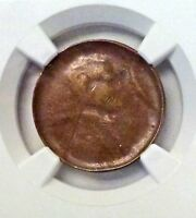 ND LINCOLN Wheat Cent NGC Mint ERROR AU 53   Struck thru Capped Die