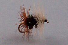 6  Renegade, dry  fishing flies, mouche pêche