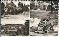Ansichtskarte Friedrichroda - Tanzbuche, Heuberghaus, Spießberghaus, u.a. - s/w