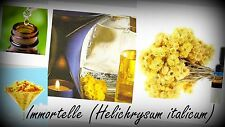 Helichrysum Immortelle Essential Oil 100% pure - 10ml