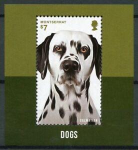 Montserrat 2014 MNH Dogs 1v S/S Pets Domestic Animals Dalmatian