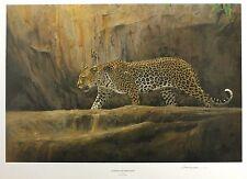 """Kim donaldson """"léopard à bushman rock"""" big cat le sgd! taille: 46cm x 64cm neuf"""