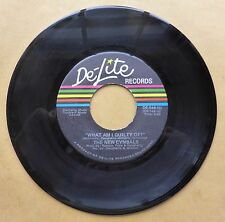 The New Cymbals, De-Lite WHAT AM I GUILTY OF/LC Funk 45 N.O.S.