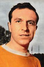 Football Photo>JIMMY ARMFIELD Blackpool 1965-66