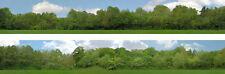 Just Trees N gauge Backscene (9''x10') – Art Printers ID149N