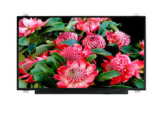 PREMIUM Display 30 Pin eDP Matte Screen Replacement For B173HAN01.0 AUO