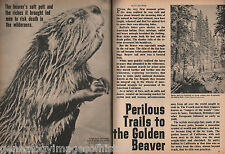 History of the Golden Beaver,Trappers & Explorers - Ashley,Beckwourth,Ogden,Repp