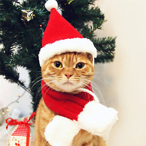 Christmas Pet Santa Hat & Scarf for Cats Dogs Puppies Xmas Decoration Costume UK