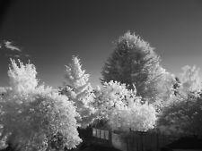 Full Spectrum converti appareil photo Fujifilm S2950 UV infrarouge Ghost Paranormal 18x
