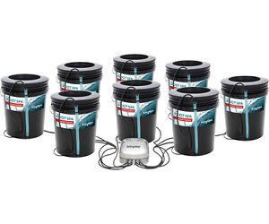 Active Aqua 8 SITE Root Spa 5 Gal Bucket System Hydroponics SAVE W/ BAY HYDRO