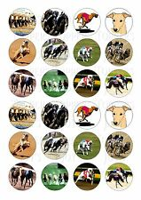 24 GREYHOUND RACING  CUPCAKE TOPPER WAFER RICE EDIBLE FAIRY CAKE BUN TOPPERS