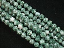 Gemstone Beads Tree Agate 8mm Round Beads 35cm Strand Jewelry FREE POSTAGE