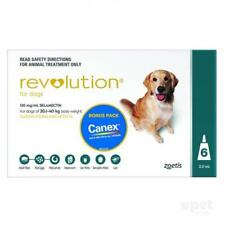 NEW Revolution for Dogs 20-40kg - Green 6 pack + Canex Intestinal Wormer