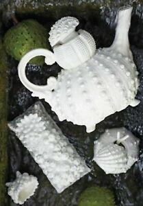 Anthropologie Coral Cliffs Butter Dish Ceramic Gray Reef Beach Home Decor