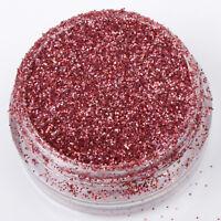 Glitter Pot Nail Art Face Body Eye Shadow Craft Iridescent Cosmetic Fine Dust