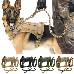 Tactical Dog Harness & Military Collar & Bungee Lead Set for K9 Training Hunting