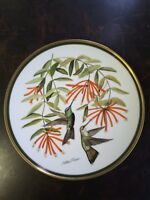 Rivoli's Hummingbird Franklin porcelain The national Audubon society