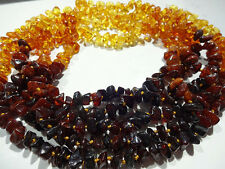 LOT- 10  BALTIC AMBER BABY NECKLACES -13inches